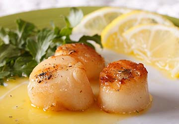 bay_ferries_the_cat_digby_scallops
