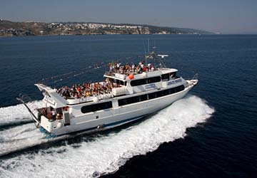 Adriatic Princess III