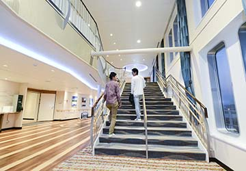 mol_ferry_sunflower_furano_stairs